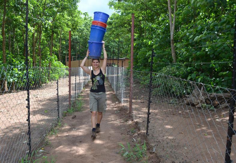 sanctuary volunteer carrying water