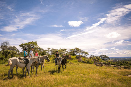 Horse Riding and Rhino Conservation Programme
