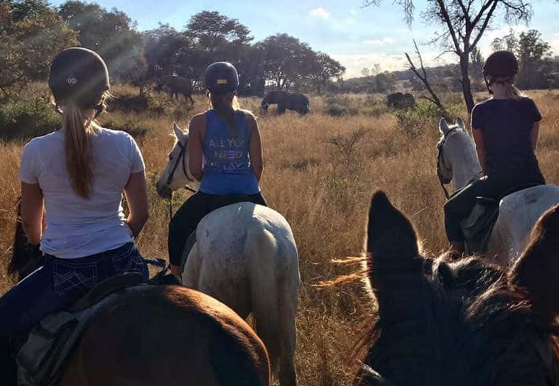 family volunteers horse riding