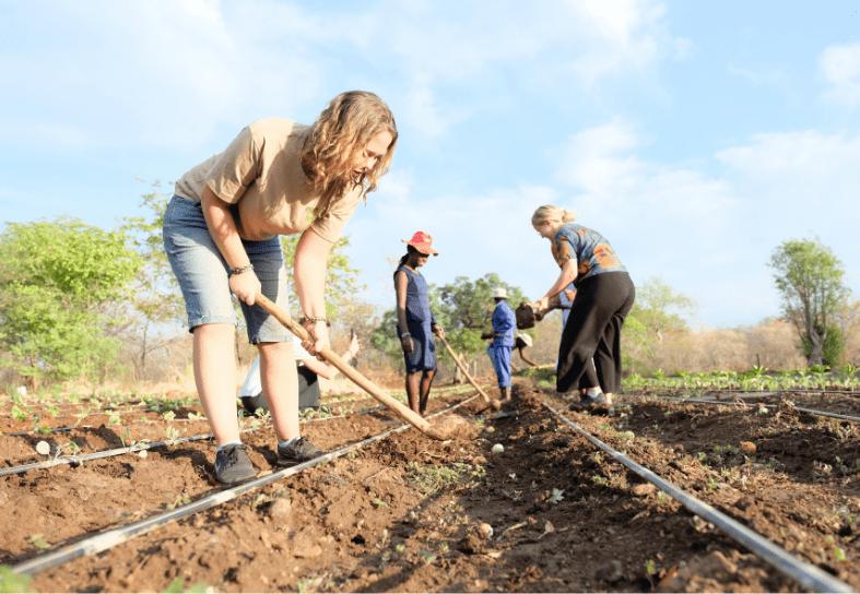Volunteer helping plant seeds