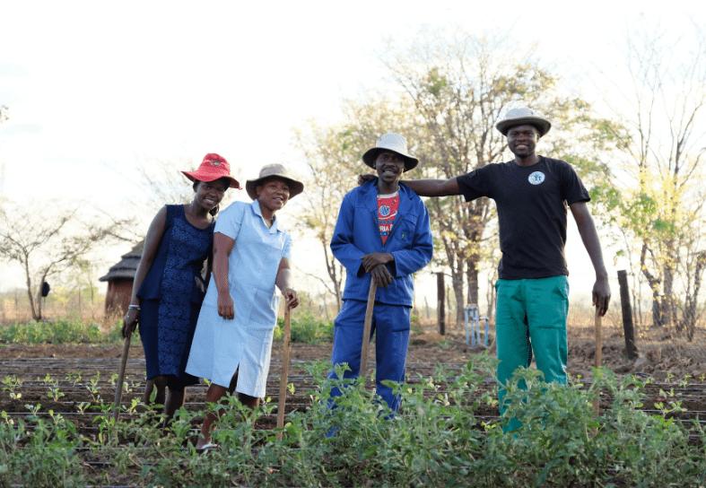 Community group in vegetable garden