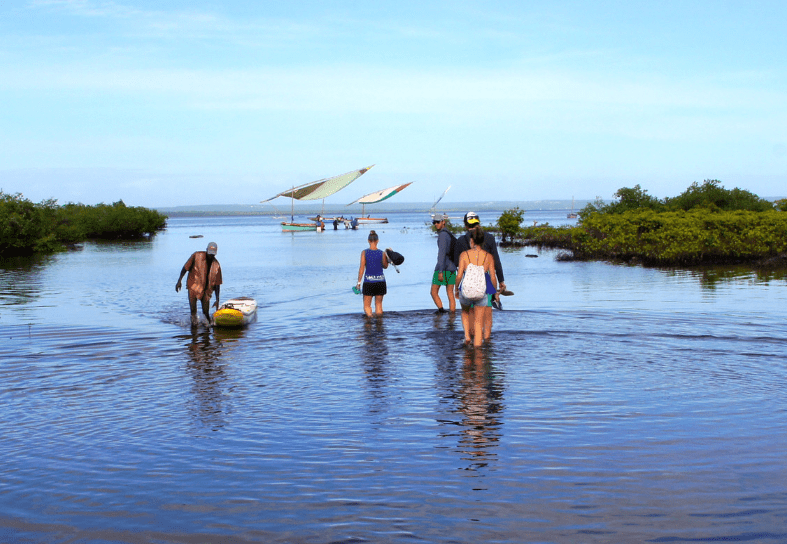 marine-conservation-estuary