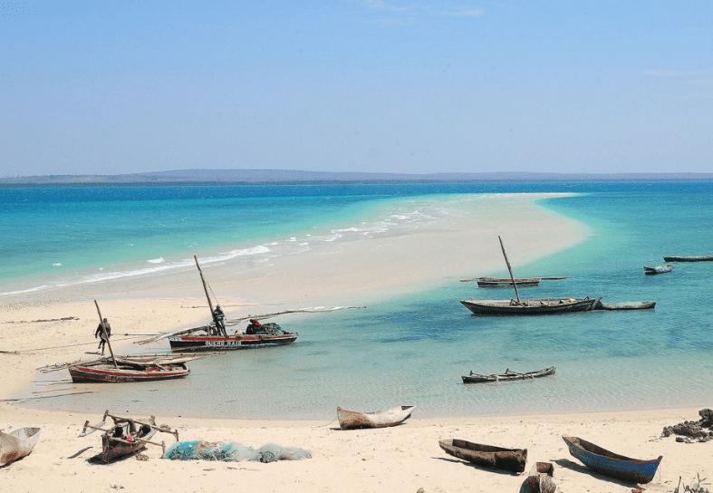 marine-conservation-mozambique