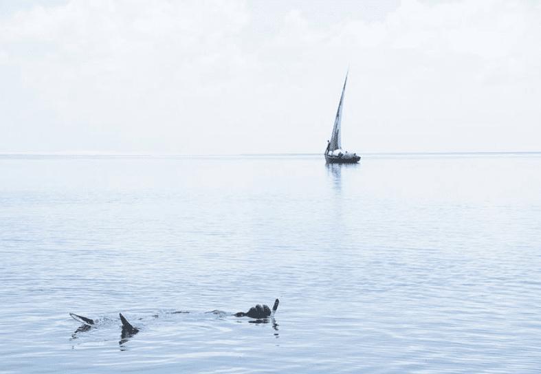 marine-conservation-snorkelling