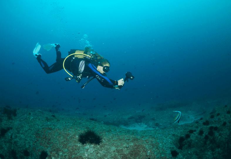 marine-conservation-volunteer-photoid