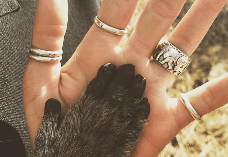 volunteer hand and baboon