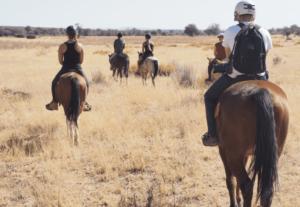 Wildlife sanctuary volunteer going horse riding