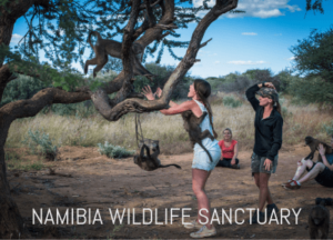volunteers in namibia
