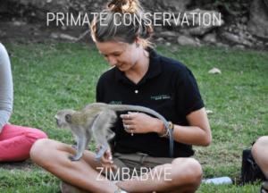 work with monkeys