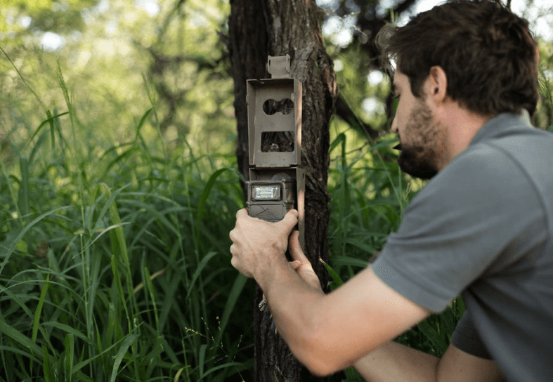 Volunteer fitting a camera to a tree