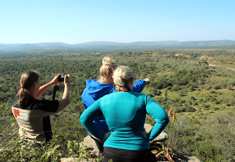 Volunteers looking out over wilderness