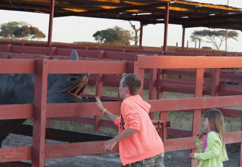 family volunteers feeding rhino