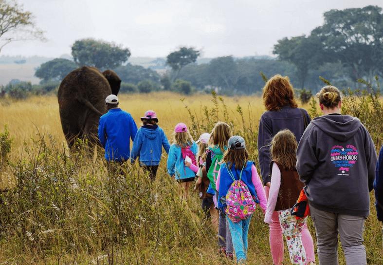 family volunteers walking with elephants