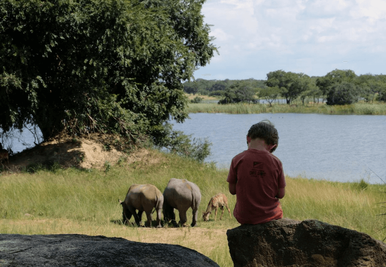 family-volunteers-rhino