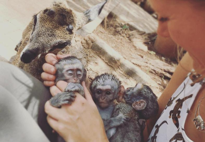 Family-volunteering-baboon-baby