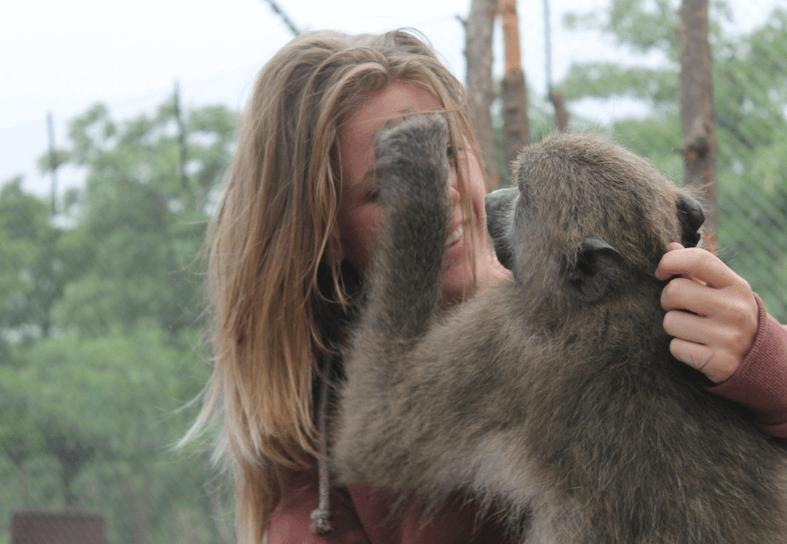 Family-volunteering-baboon-interaction