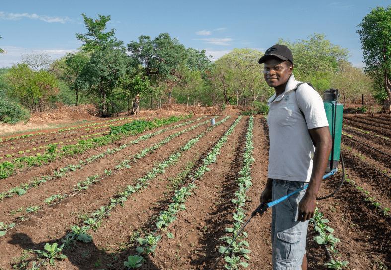 livelihood-development