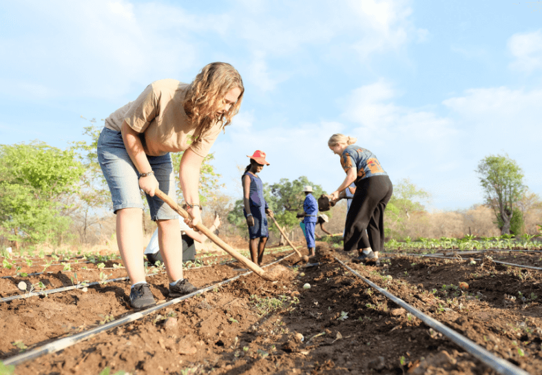 family volunteers farming