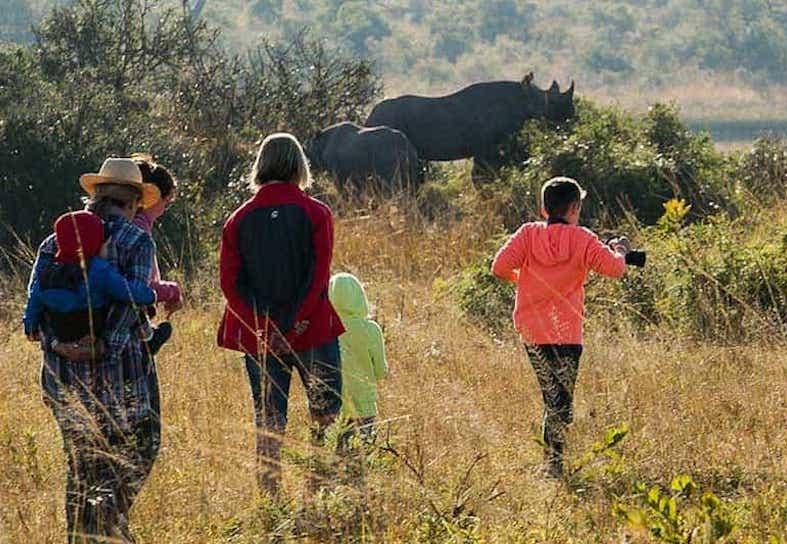 family-volunteering-rhino