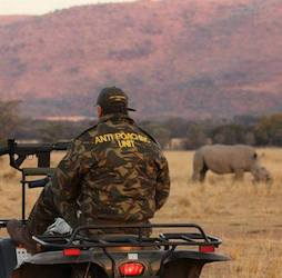 Our partners - anti-poaching training