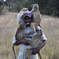 Our partners - primate conservation