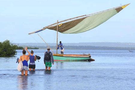 Marine Conservation Programme for Under 18s
