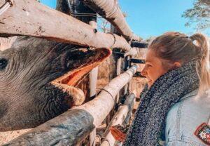 Girl volunteer with rhino