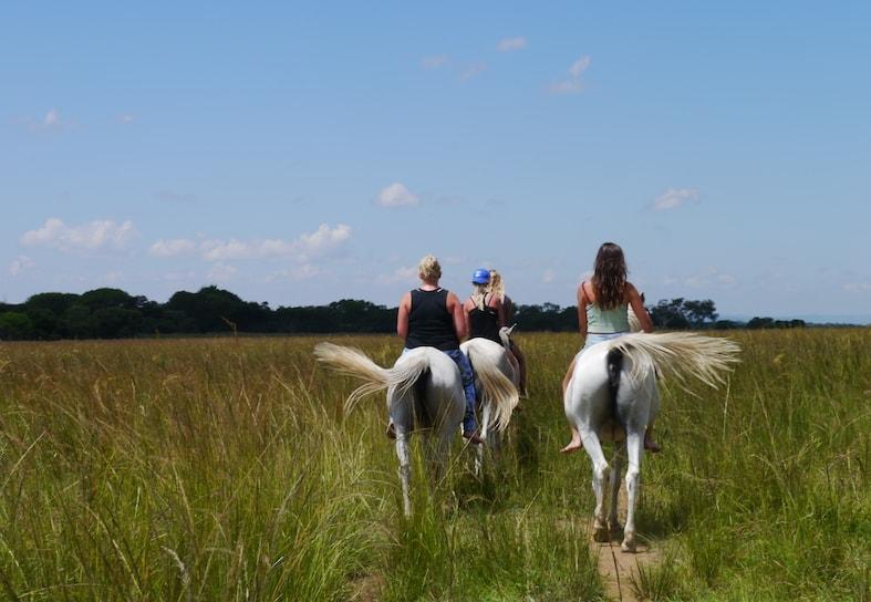 Horse riding volunteers in Zimbabwe