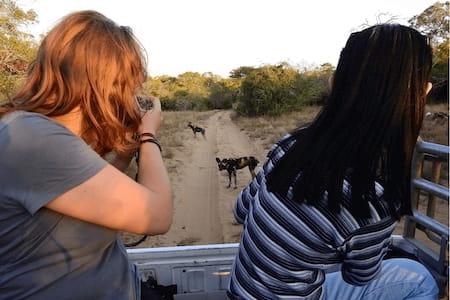 Endangered Wildlife Conservation Programme South Africa