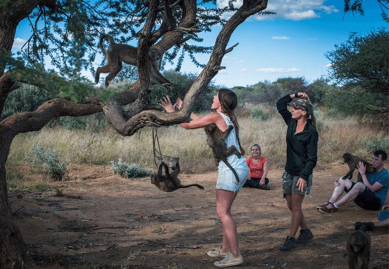 Namibia Wildlife Sanctuary Programme