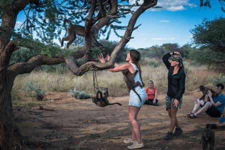 Wildlife Sanctuary Programme in Namibia