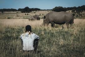Rhino & Elephant Conservation Programme in Zimbabwe