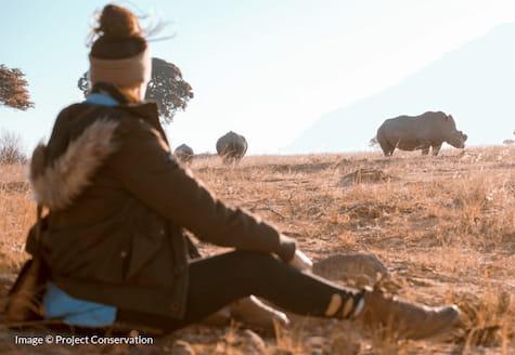 Girl sitting in field watching white rhino in Zimbabwe