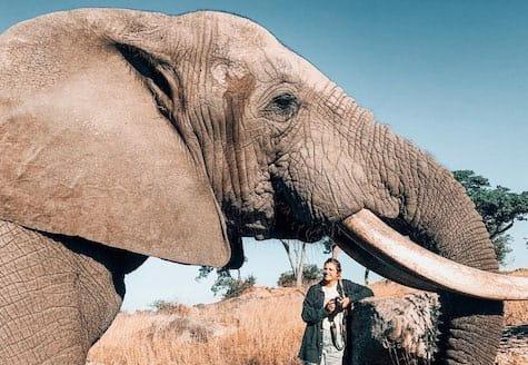 Girl volunteer drinking tea standing next to large African elephant