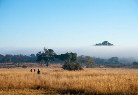People walking through the African bush with a large mountain in front of them
