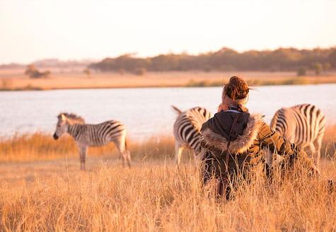 Girl sitting watching zebra in Zimbabwe