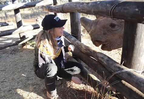 Volunteer with black rhino looking at her inside a feeding pen in Zimbabwe