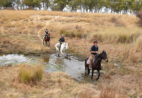 A group of horse riders on patrol
