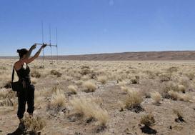 Volunteer using radio telemetry to track wildlife