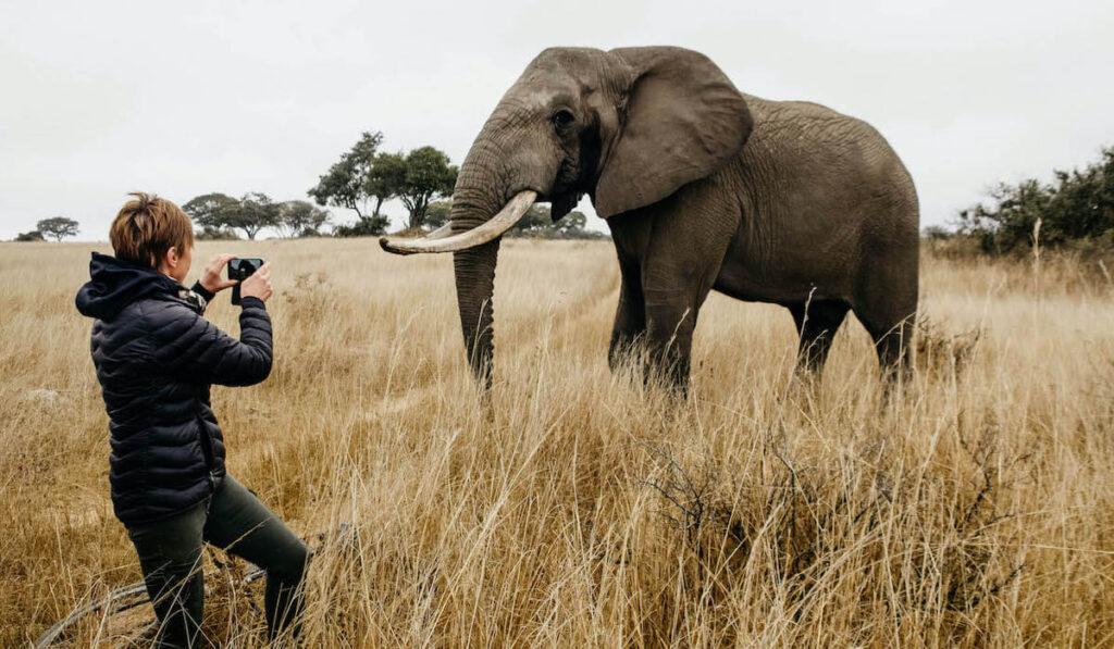 Volunteer standing in front of elephant taking photo